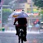 思わずひきこまれそうな雨をテーマにした35の写真